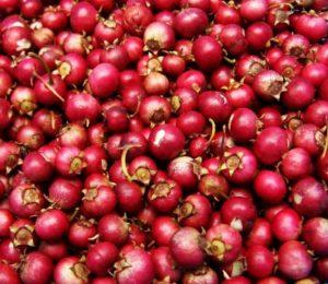 cranberry streusel bars