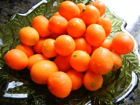what are Kumquats