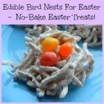 Edible Bird Nests For Easter No-Bake Easter Treats!