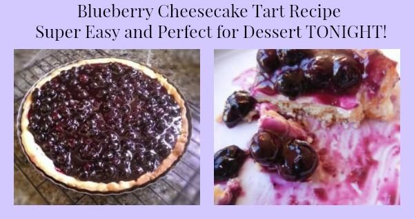 blueberry cheesecake tart recipe